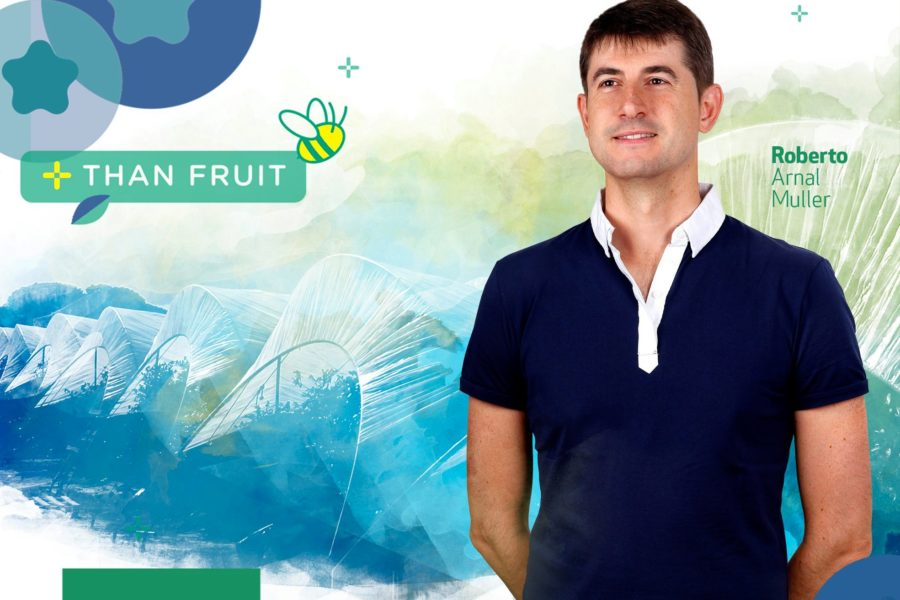 Plus Berries participa en Webinar «Emprende post COVID19: Retos Industria y Agroindustria»